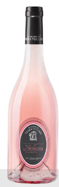 Les chais Saint Laurent  NIELLUCCIU ROSE – DOMAINE DE TERRA VECCHIA